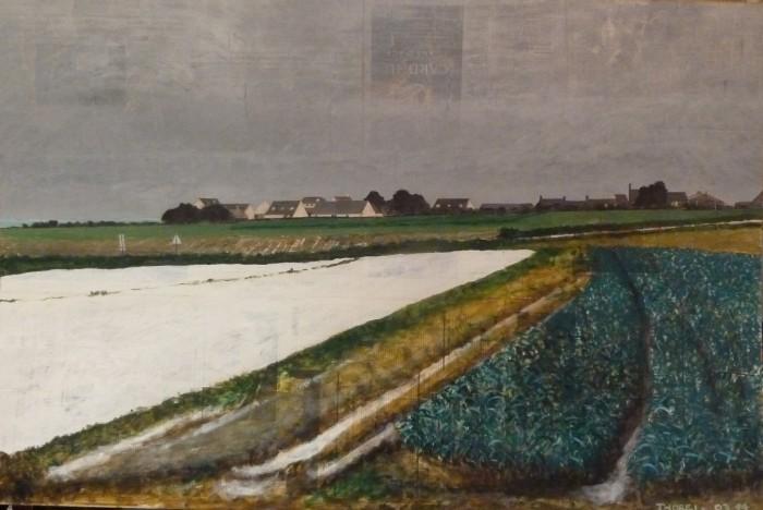 le champs en plastique