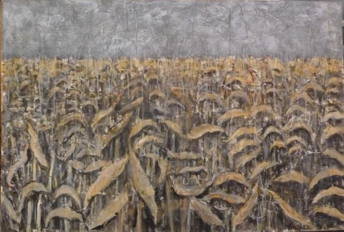 maïs fanés