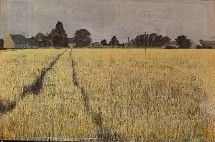 sillons dans les blés