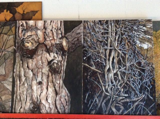 (a) troncs d'arbres sept.2017 (tableaux de 100x70)