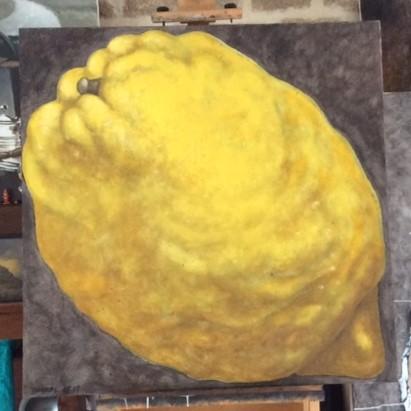 citron potelé juil. 2017 (100x100)