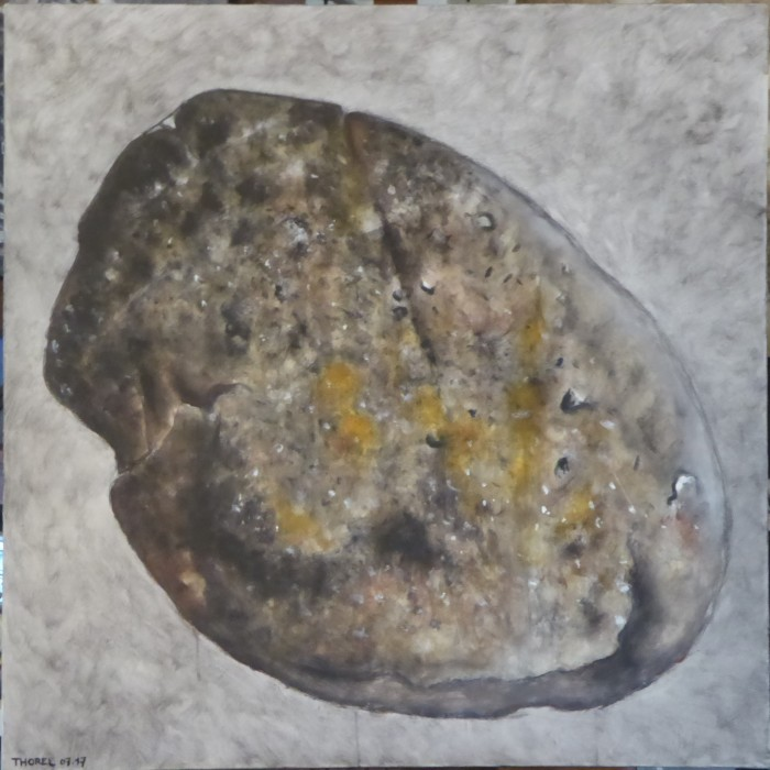 galet juillet 2017 (100x100)