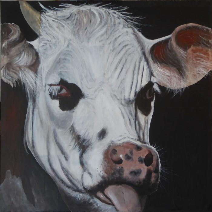 3- vache en colère
