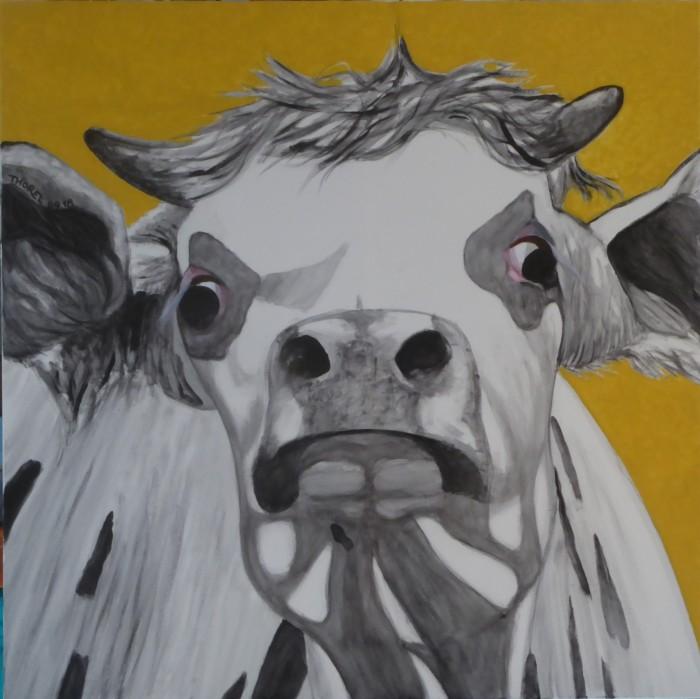 9- vache en colère (2)